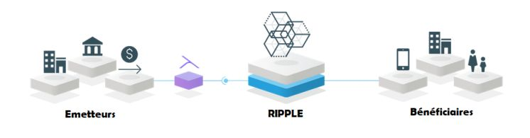 Ripple Transaction Protocol : transfert d'argent en temps réel